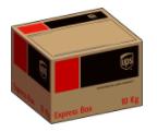 UPS 10kg Box