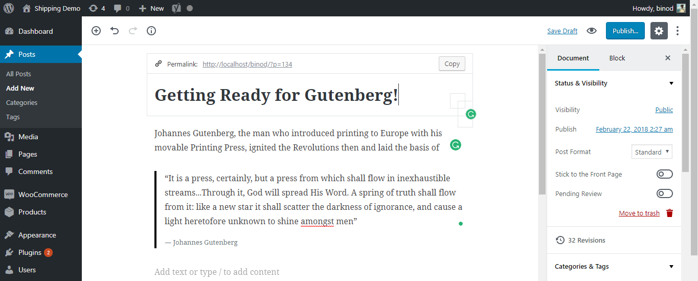 Gutenberg WordPress Editor Interface